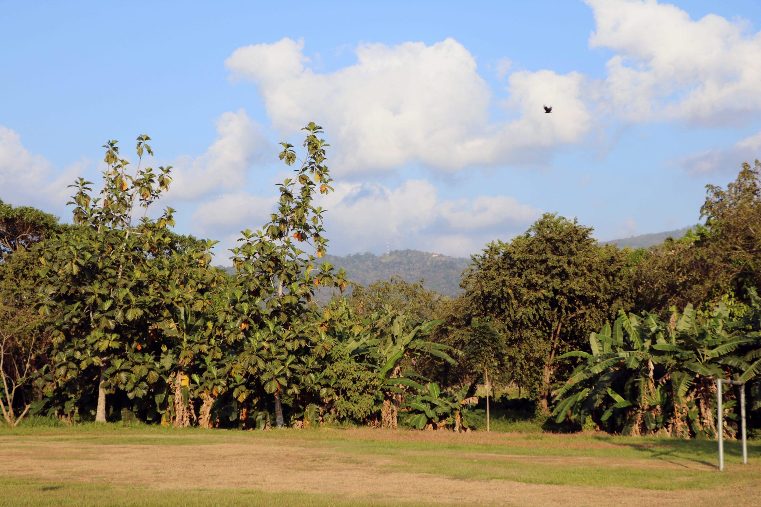 Un ejemplo de la belleza natural de Honduras.